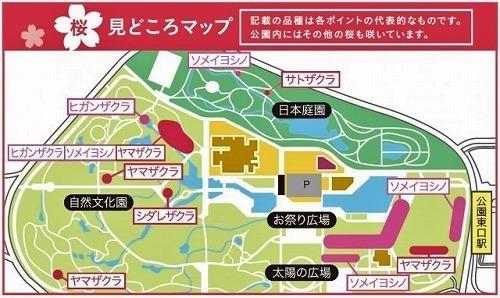 さくらマップ.jpg